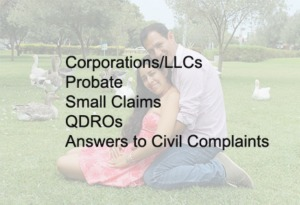 corporations, LLCs, Probate, Small claims, QDROs, Answers to civil complaints